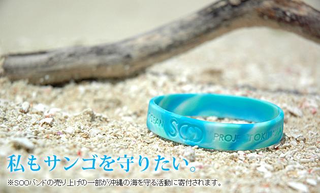沖縄 SOOバンド サンゴ 珊瑚