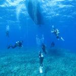 久米島 ダイビング JIC