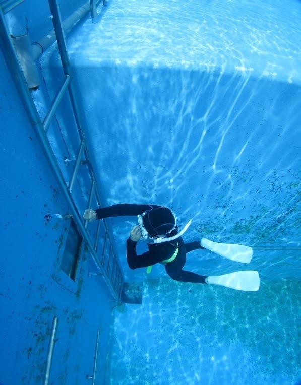 スキンダイビング 湘南 三浦半島 三戸浜 神奈川 プール トレーニング
