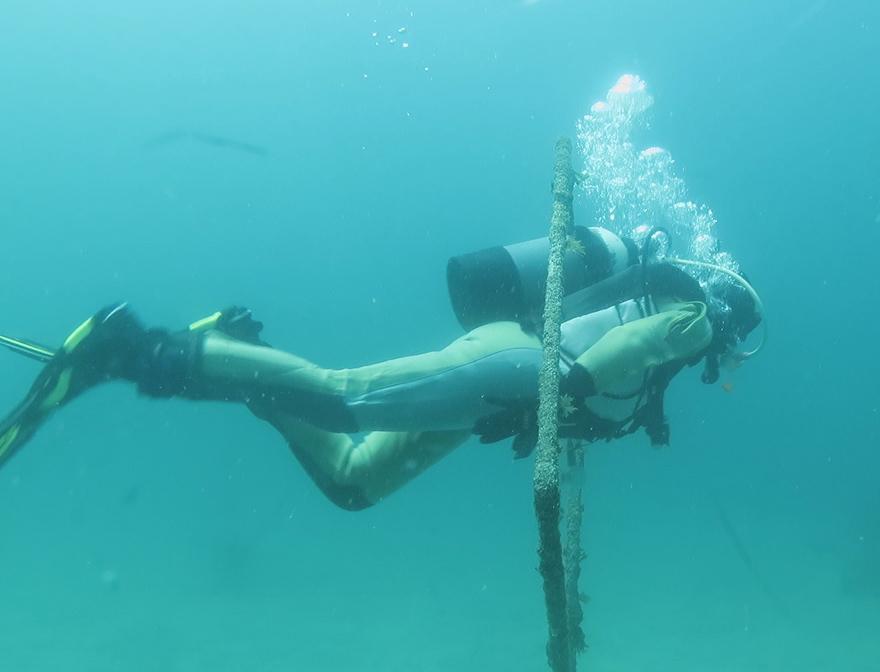 中性浮力 ダイビング トレーニング