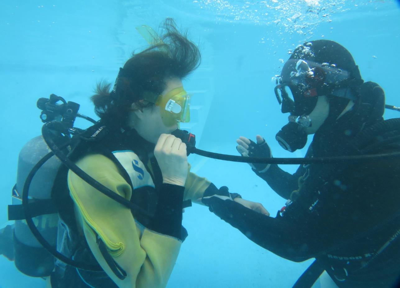 プール 講習 ダイビング 神奈川