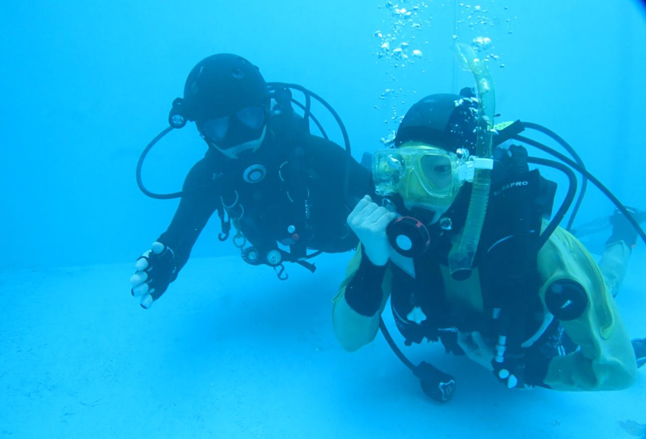 プール 講習 バックアップ空気源 オクトパス ダイビング 神奈川