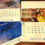 ラウト 海のカレンダー