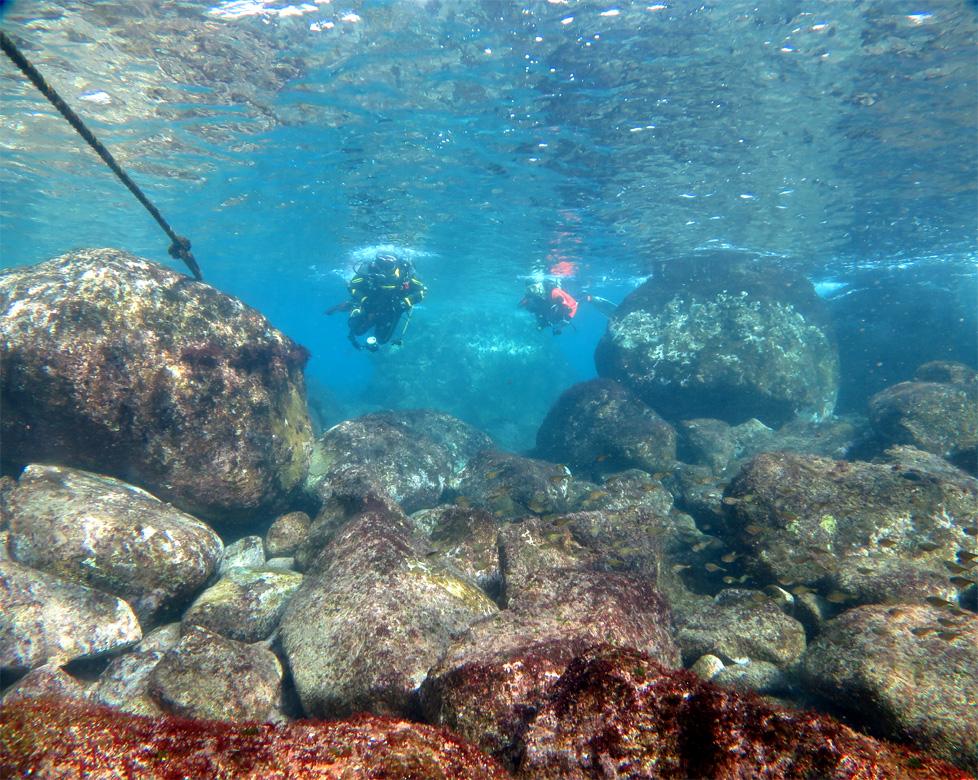 岩 ビーチ ダイビング