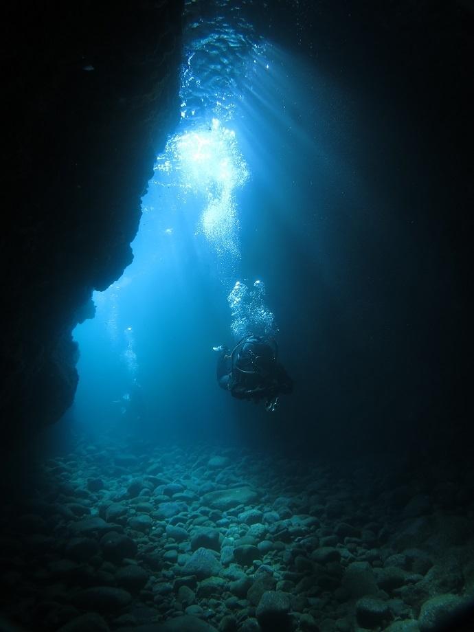 田子 伊豆 ダイビング 洞窟