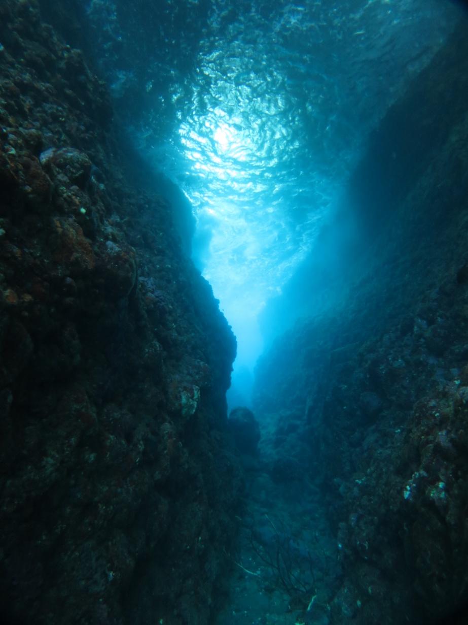 田子 洞窟 ダイビング