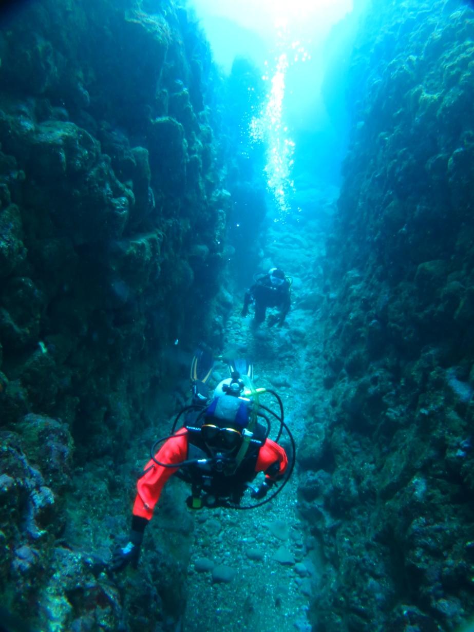 田子 ダイビング 洞窟
