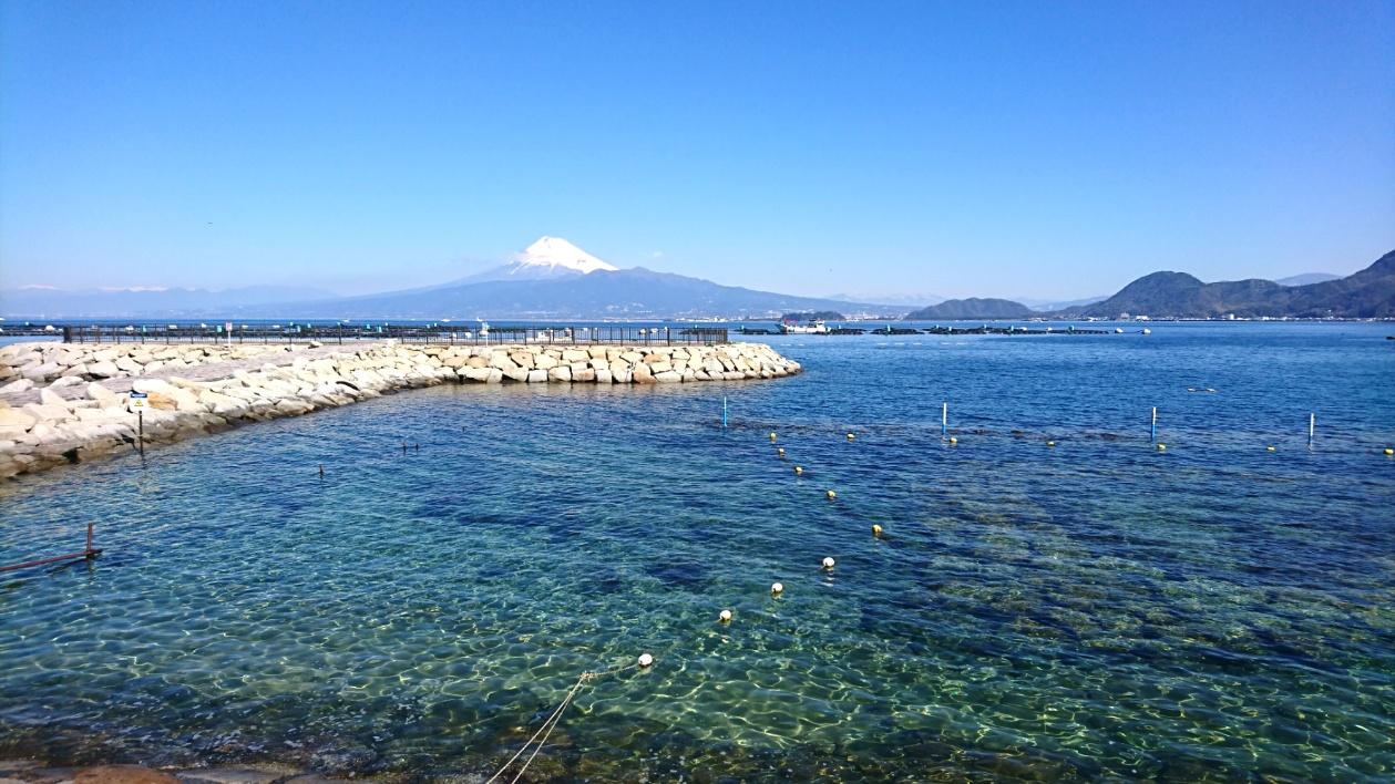 平沢ビーチ ダイビング