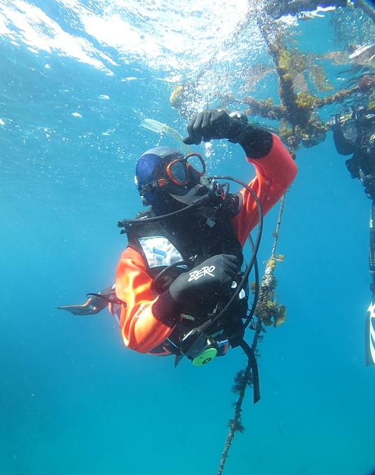 浮上 中世浮力 ダイビング