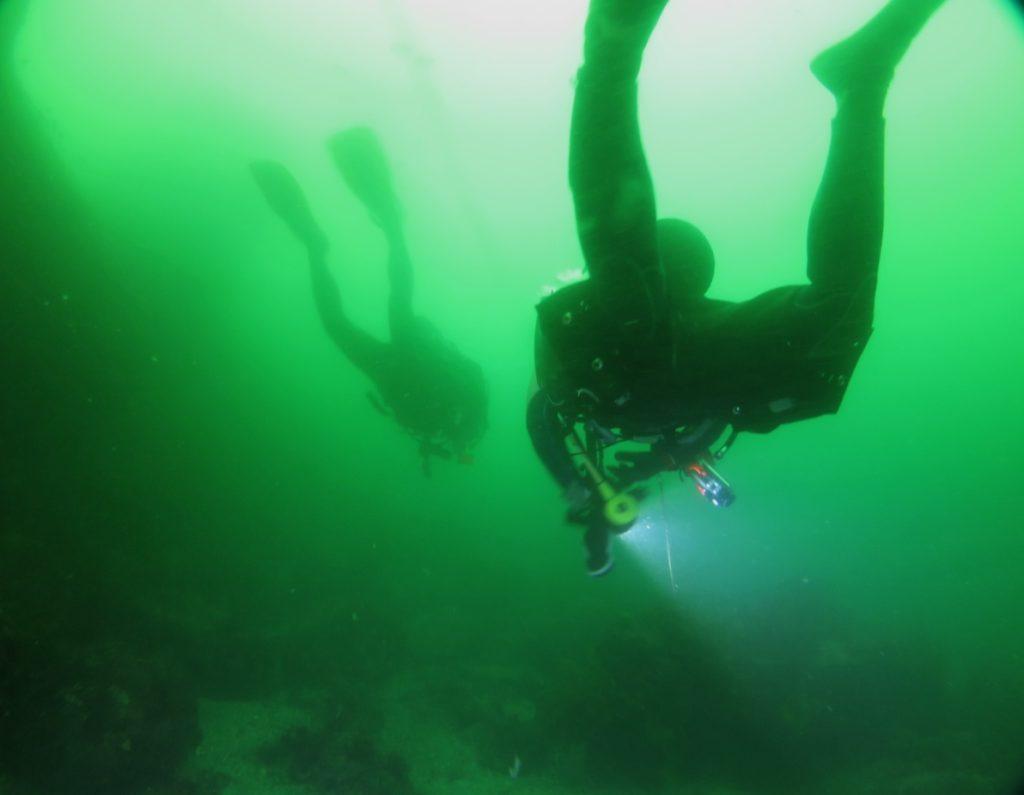 ダイブマスター セルフダイビング バディ潜水