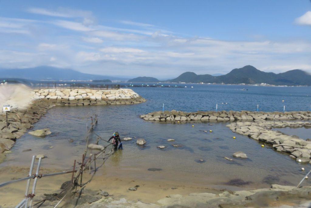 平沢 ダイビング