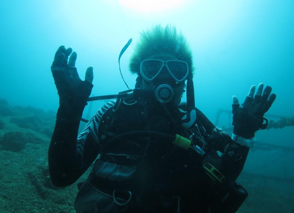 獅子浜 ダイビング
