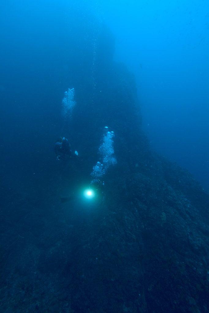 田子 ダイビング