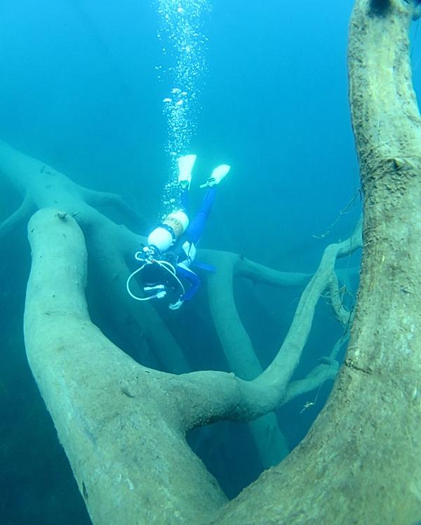 本栖湖 高所潜水ダイビング