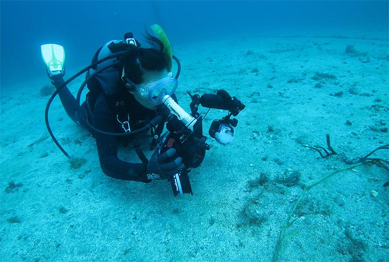 水中写真 撮影 ダイビング 講習