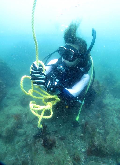 ダイビング ロープワーク PADI SP 講習 コース