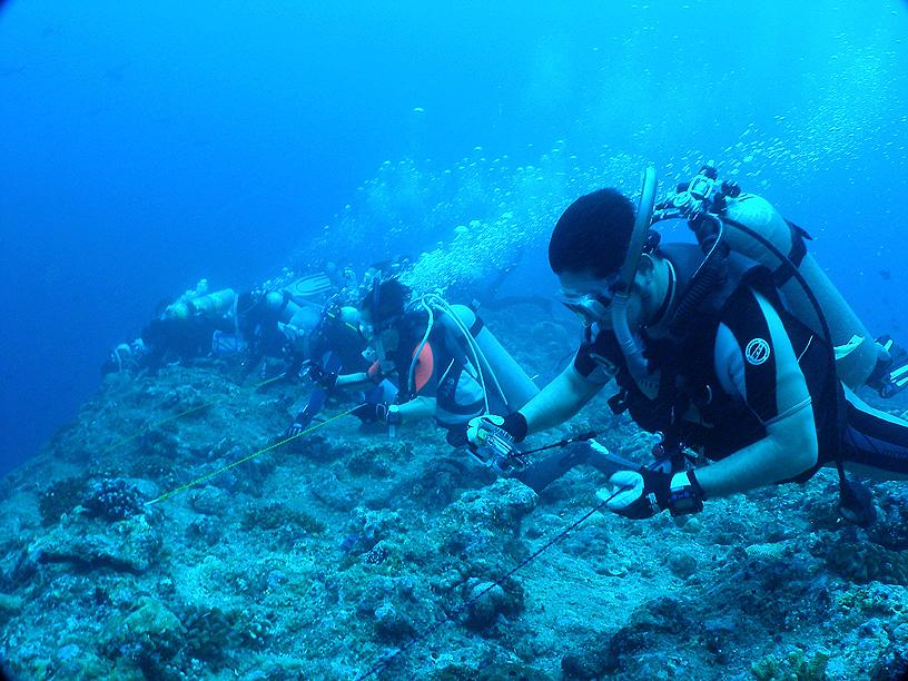 カレントフック ドリフト ダイビング アクセサリー