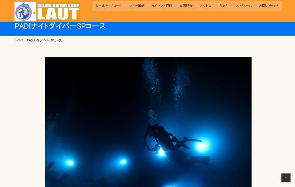 ナイトダイビング PADI 日帰り 神奈川 SP 講習 コース