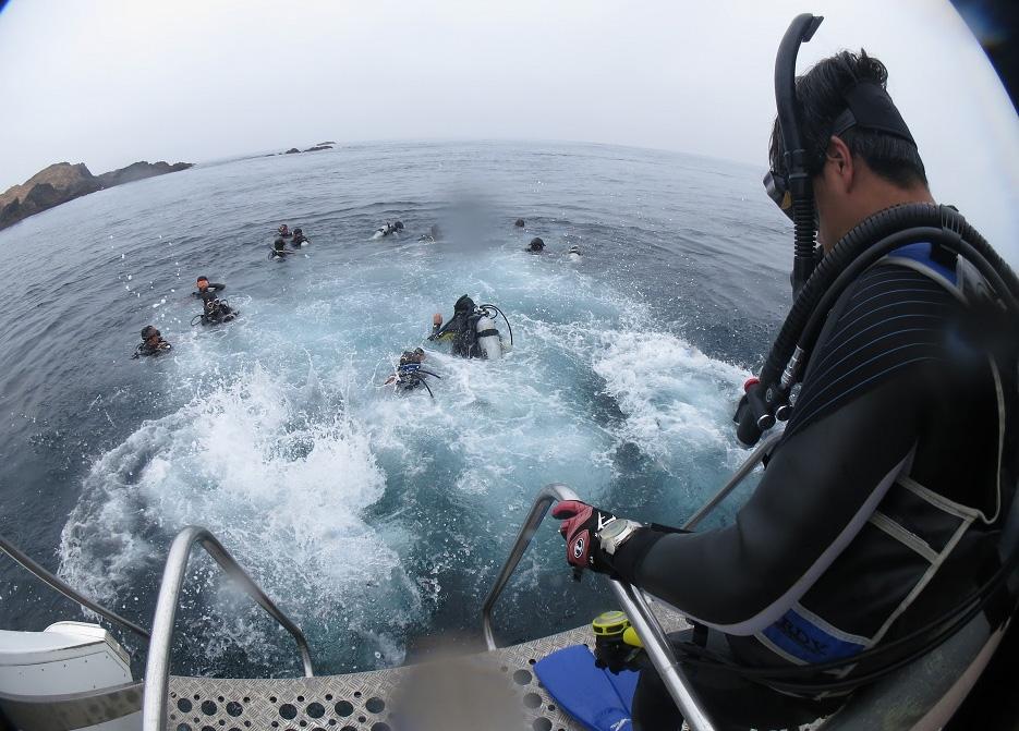 ボート ダイビング エントリー PADI 講習 SP