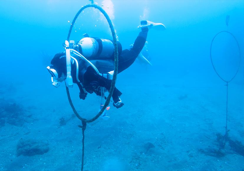 海で中世浮力の練習