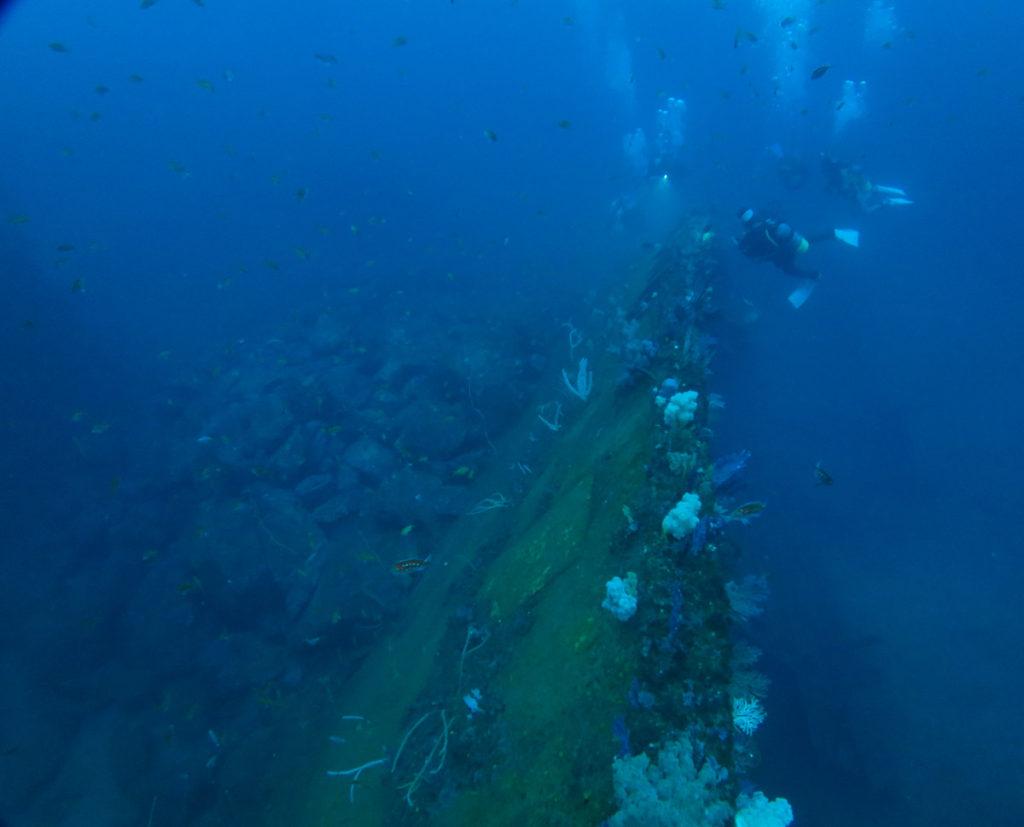 沈船 熱海 ダイビング