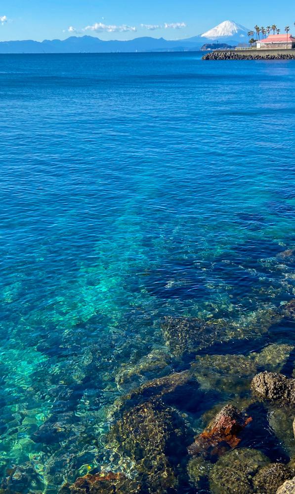 逗子 ダイビング ビーチ 透明度