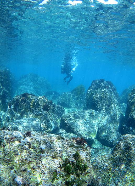 岩 ダイビング