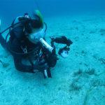 水中写真撮影 講習 講座 ダイビング SPコース
