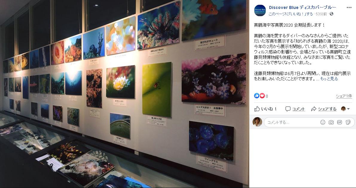 真鶴町立遠藤貝類博物館で開催していた写真展「知られざる真鶴の海2020」