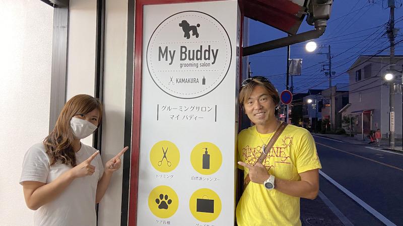 鎌倉 長谷 トリミング 犬 マイバディ