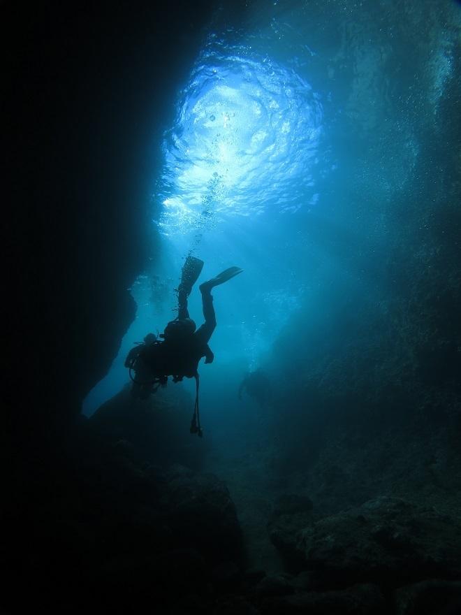 伊豆 洞窟 ダイビング ポイント カバーン 熱海 小曽我浦
