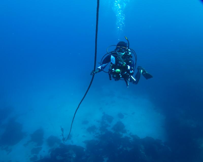 初島 ダイビング 透明度
