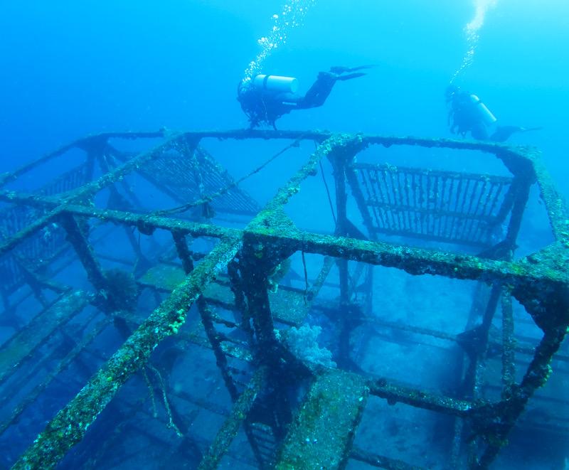 初島 ダイワハウス 漁礁