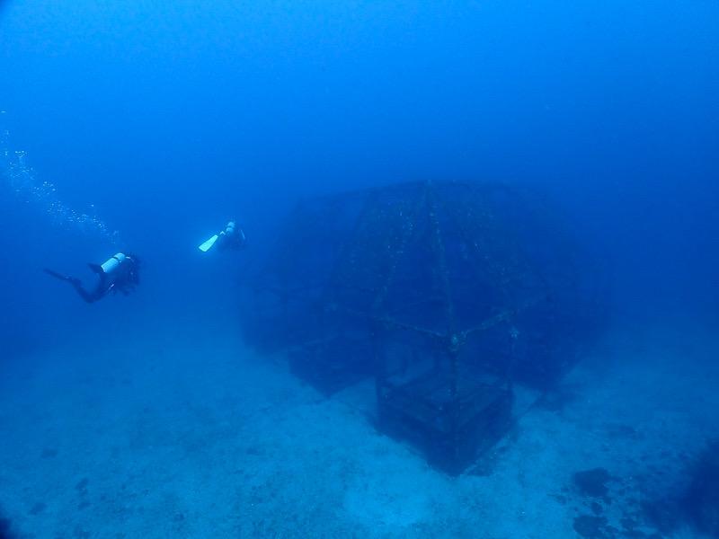 初島 ダイワハウス 漁礁 ダイビング