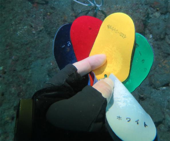 PADI AOWコース ディープダイビング 色の吸収