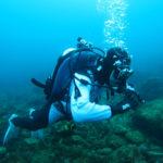 中性浮力 ダイビング 神奈川県 講習 トレーニング