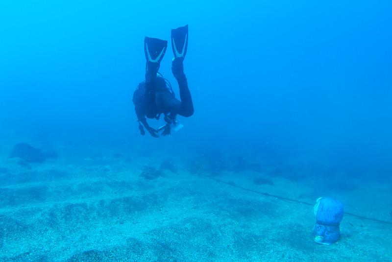 江の浦 ダイビング 透明度