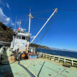 江の浦 ボート ダイビング