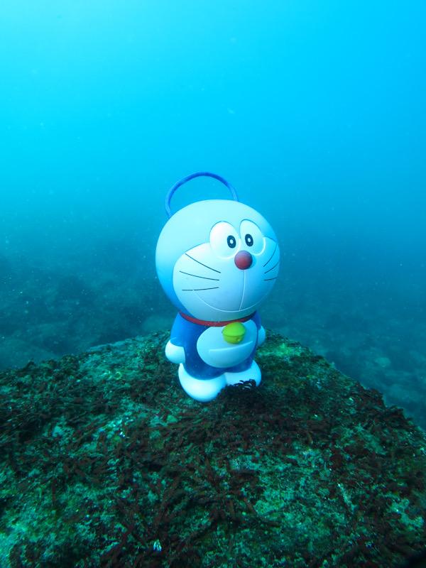 江の浦 ダイビング ドラえもん
