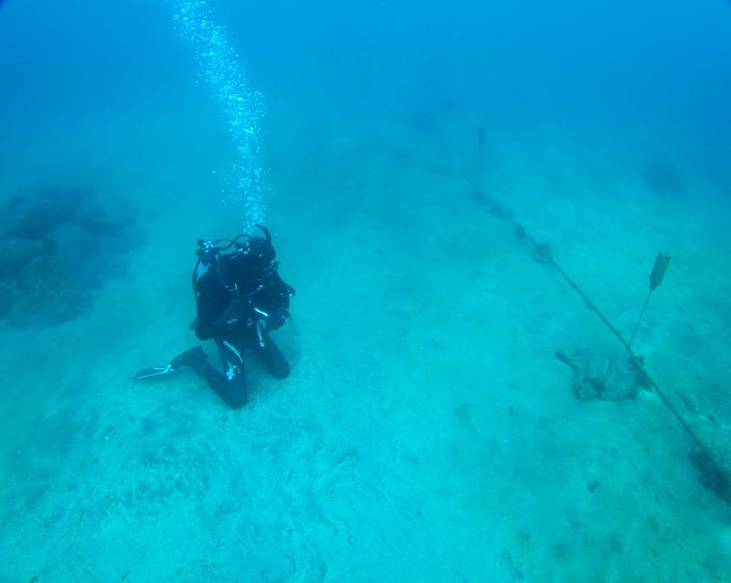 岩 ダイビング ダイブマスター