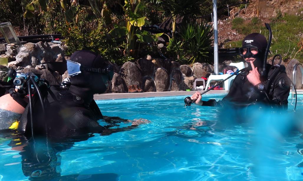 稲取 ダイビング プール プロコース