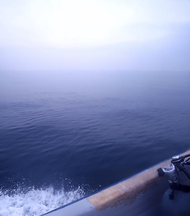 逗子 ダイビング オオタカ根