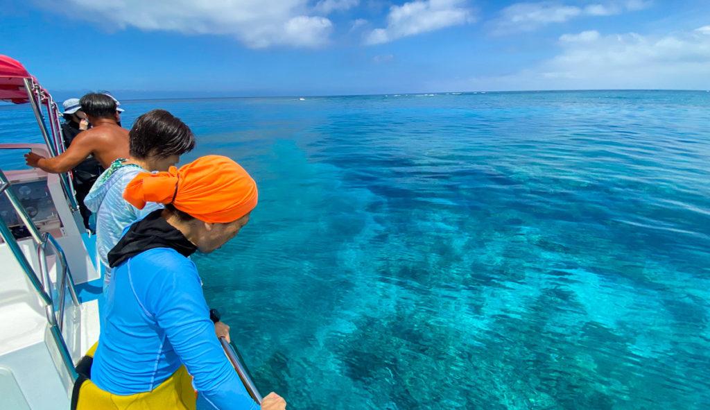 西表島 ダイビング サンゴ
