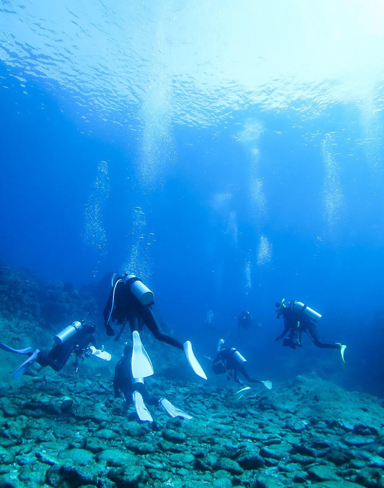 瑠璃の宮殿 ダイビング 沖縄 西表島