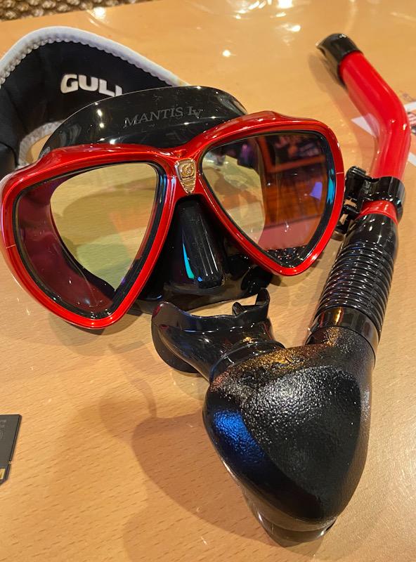マンティスLV GULL ダイビング マスク