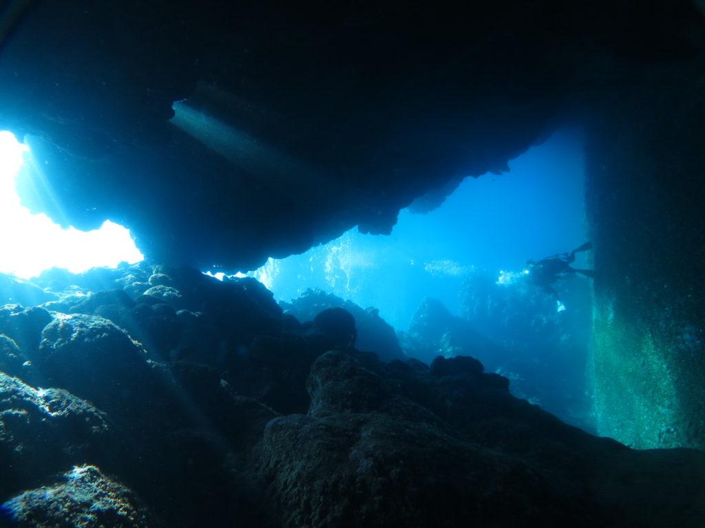 瑠璃の宮殿 西表島 ダイビング