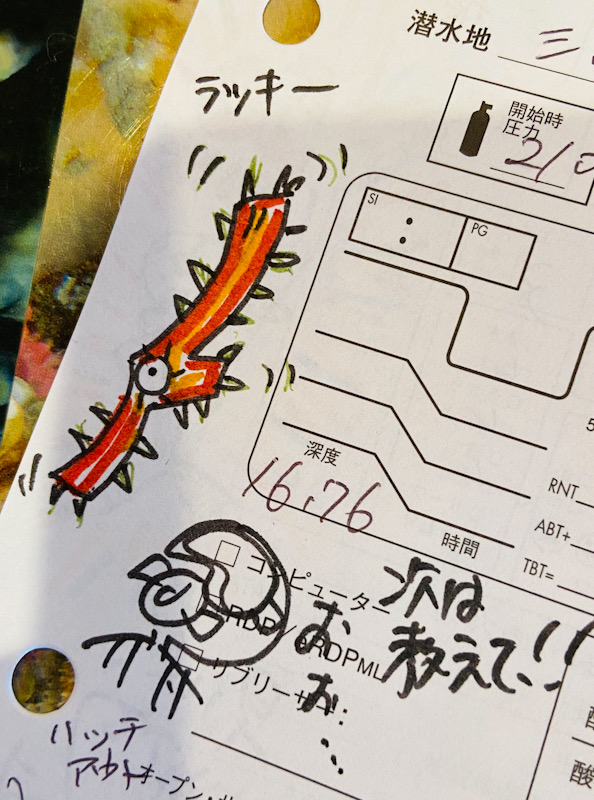 ログブッログ付け ダイビング 記念 イラスト