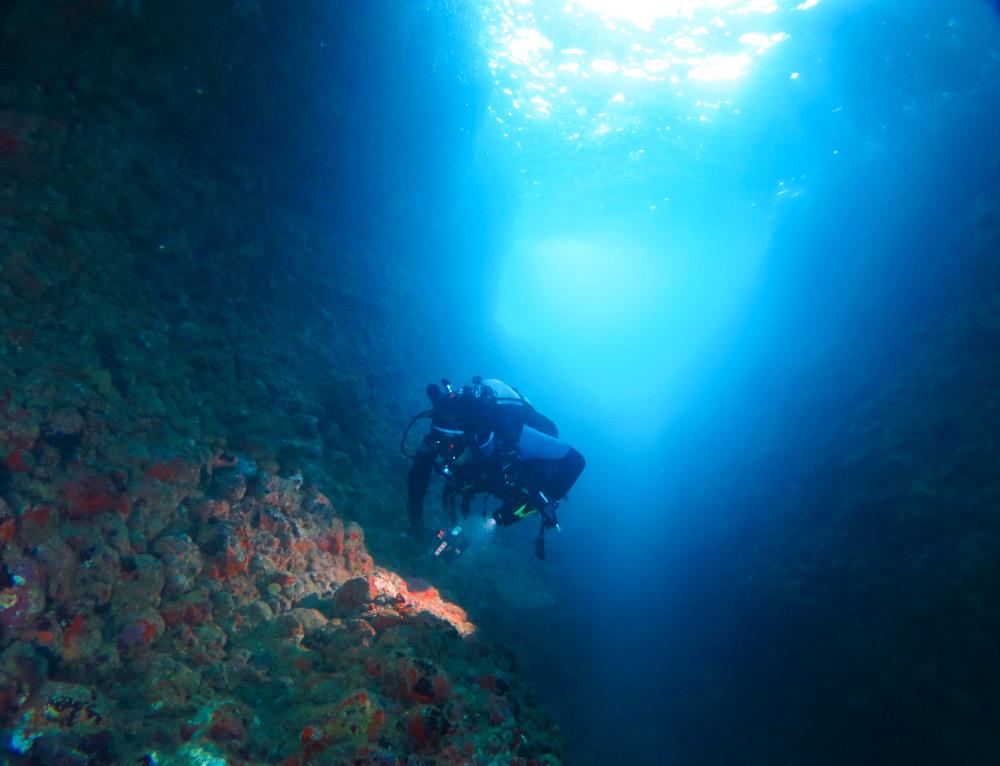 田子 地形 ダイビング