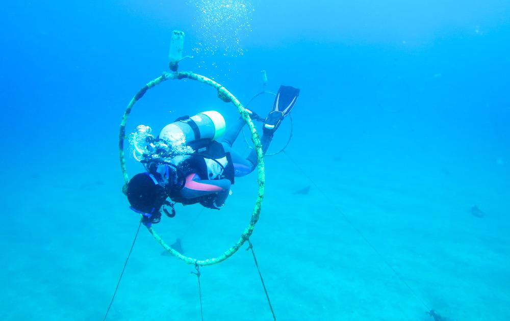 ダイビング 中性浮力 講習 フラフープ