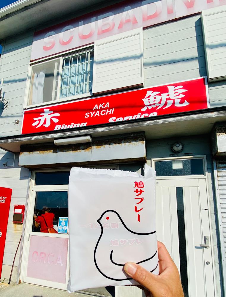 串本 赤鯱 ダイビング